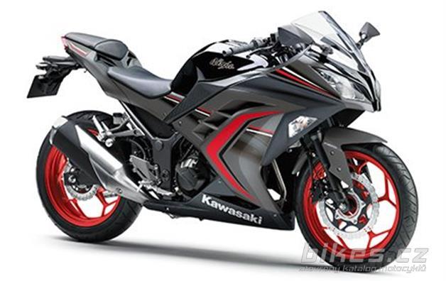 Kawasaki Z300 Special Edition