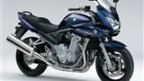 Thumbnail image for http://media.bikes.cz/Photo/img_60160O34560O12934O33O1142538OBO04507O0854O3.jpg?text=Suzuki GSF 1250 Bandit S